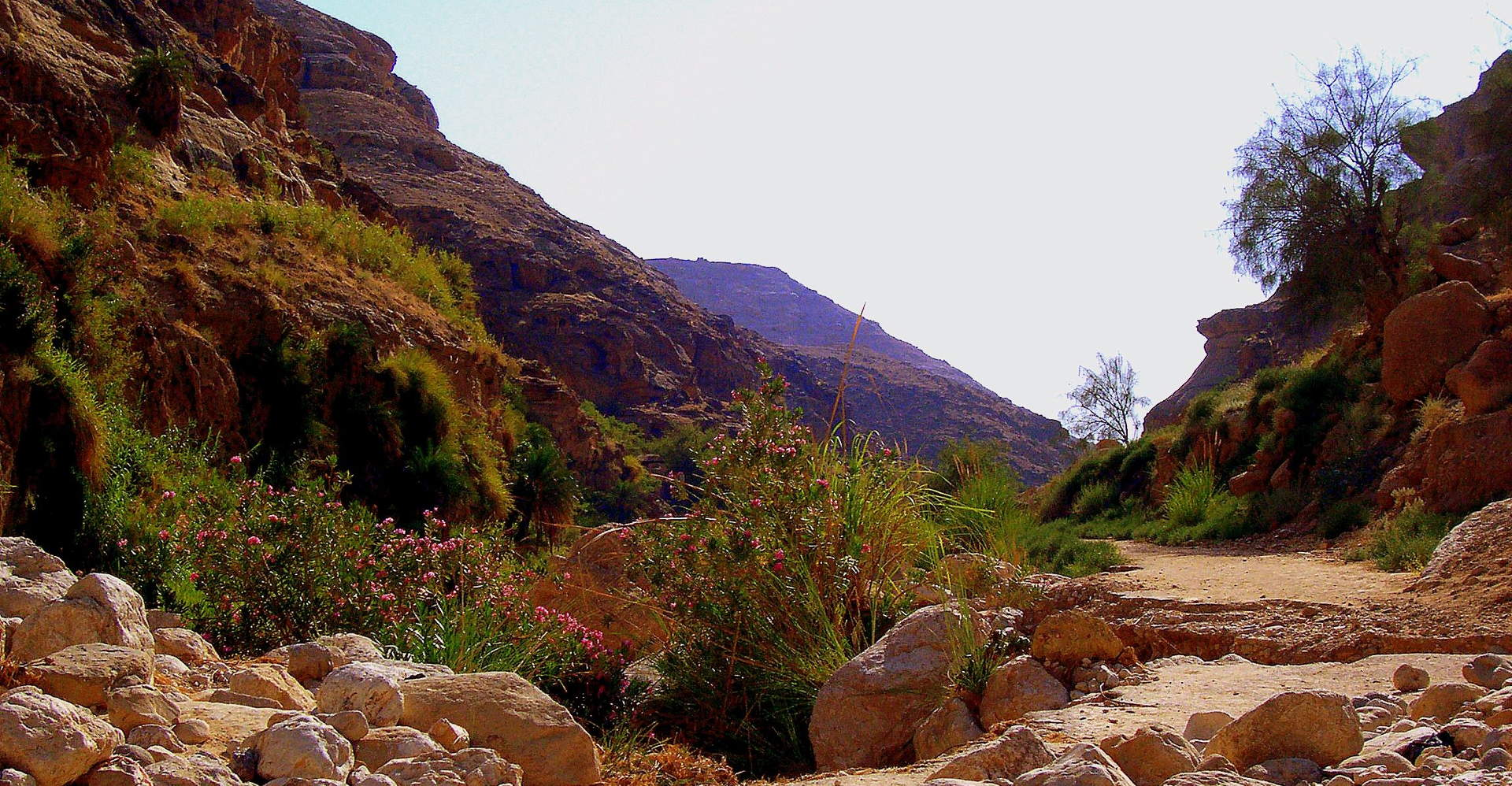Wadi Ibn Hammad and Karak Castle