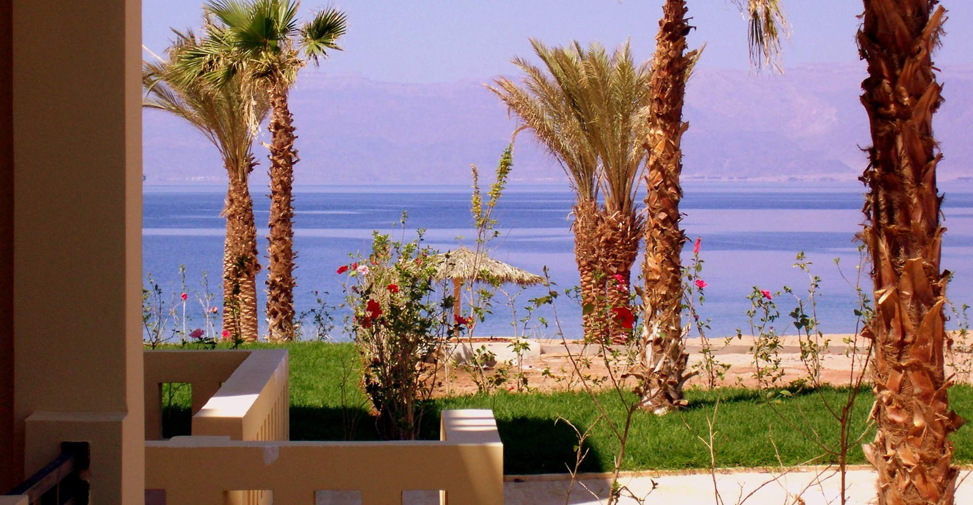 Jordan's Aqaba Petra & Wadi Rum Tour